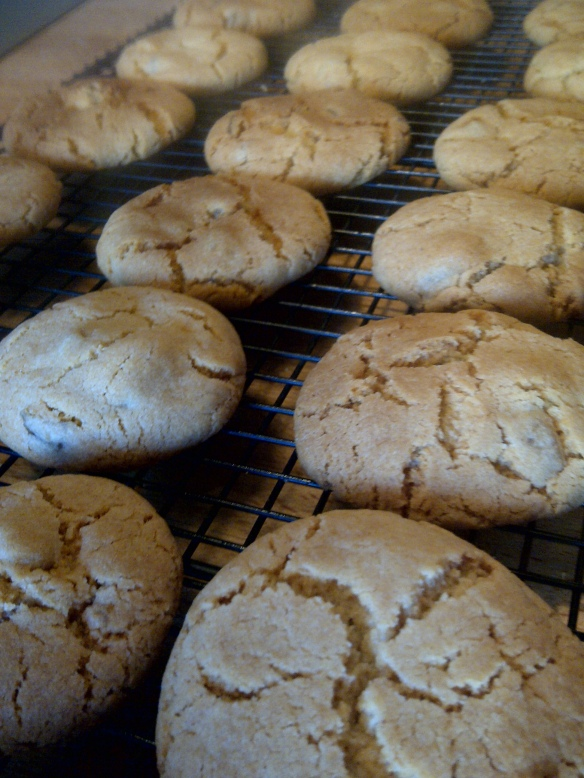 Image of cooked biscuits cooling on a rack