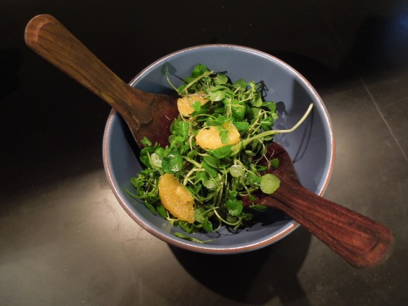 Image of watercress and orange salad