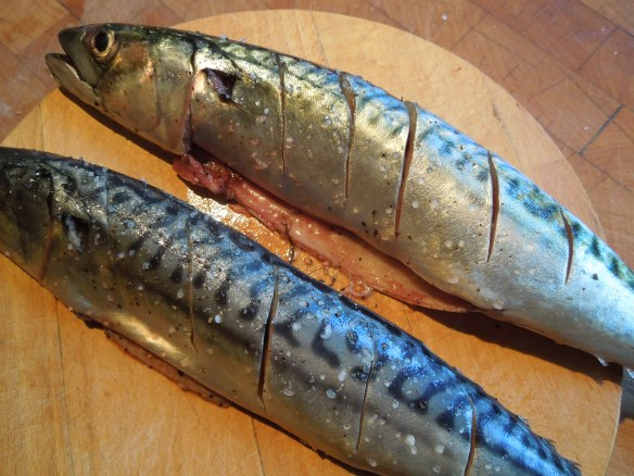 Image of raw mackerel, slashed