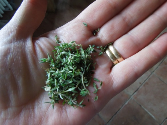 Image of a small handful of thyme