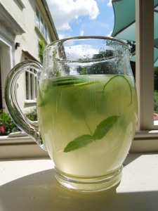 A jug of Sekanjabin with lime