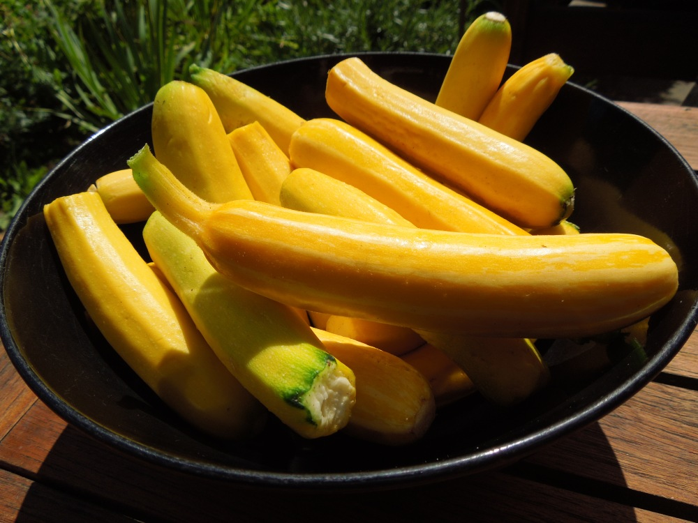 Image of yellow courgettes in a black bowl