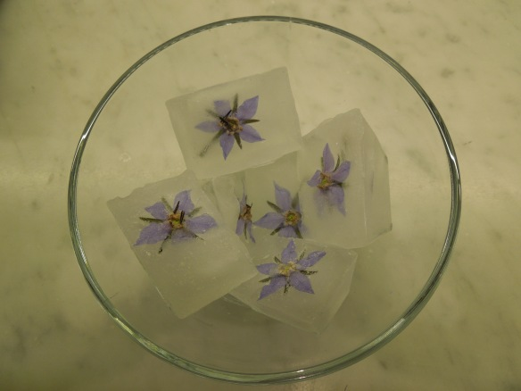Image of borage flower ice cubes in a glass bowl