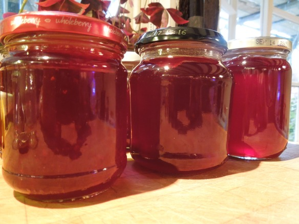 Image of jars of redcurrant jelly