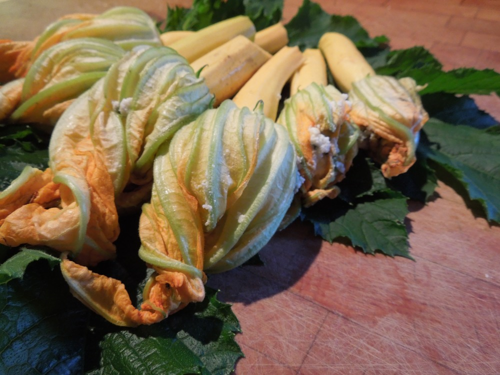 Image of stuffed courgette flowers