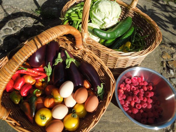 Image of baskets of garden produce