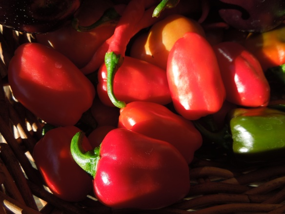 Image of chillies