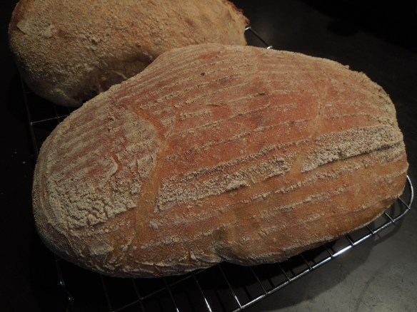 Image of badly risen sourdough loaf