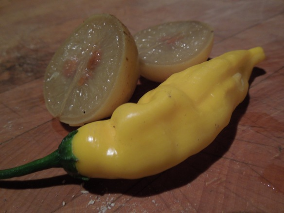 Image of preserved lemon with lemon chilli