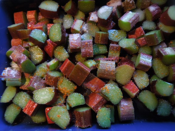 Image of chunks of rhubarb