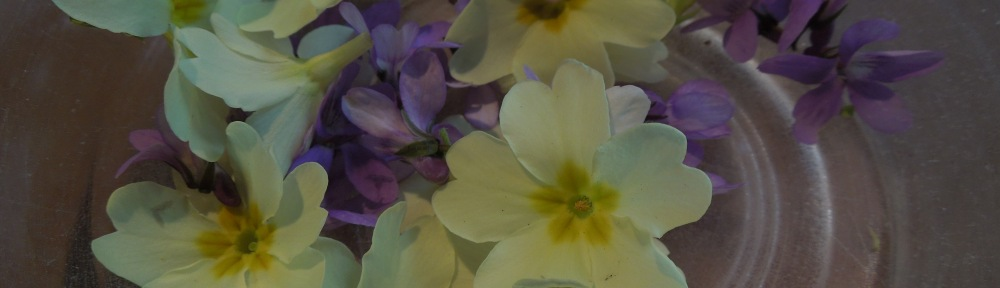 Image of primrose and violet flowers in a bowl