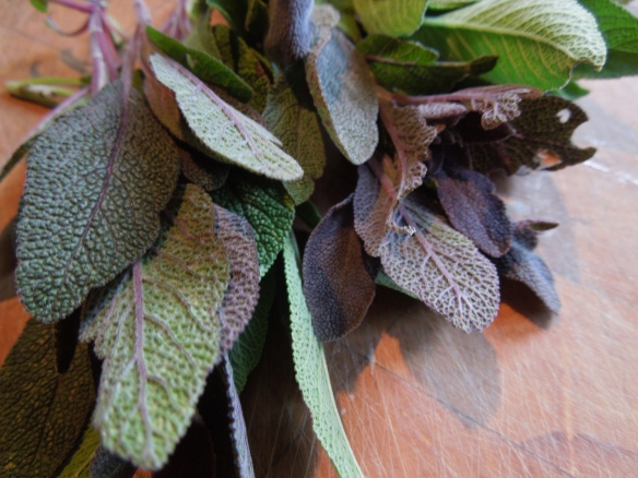 Image of sage leaves