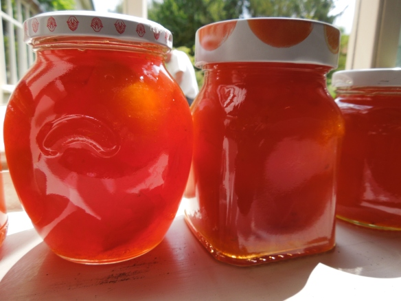 Image of jars of apricot conserve