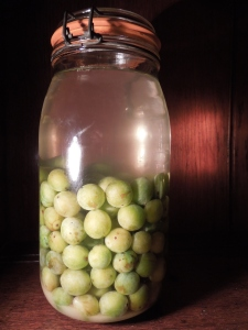 Image of bullaces in preserving jar with gin and sugar