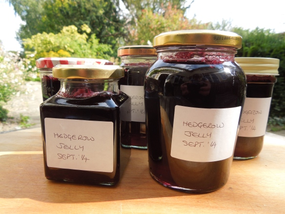Image of jars of hedgerow jelly