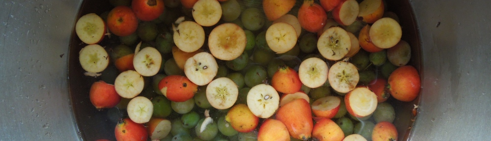 Image of bullaces and crabapples in a pan