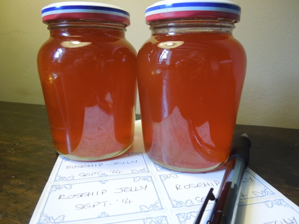 Image of pots of rosehip jelly ready for labelling