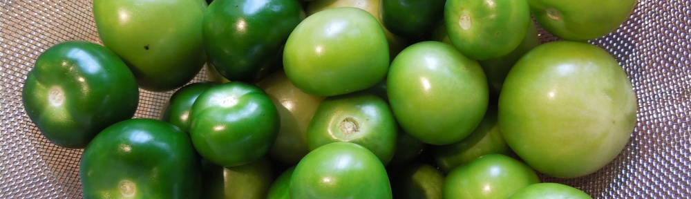 Image of husked tomatillos
