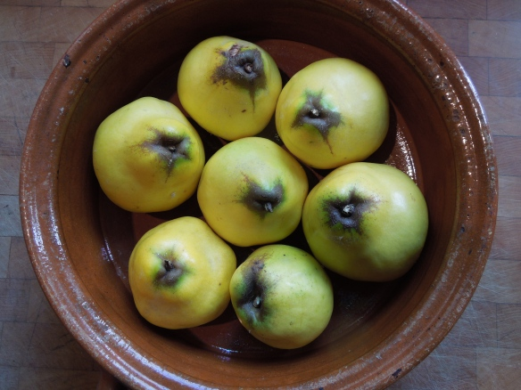 Image of quinces ready for baking