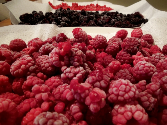 Images of berries defrosting