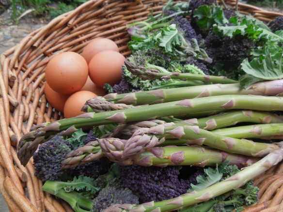 Image of eggs, broccoli and asparagus in a basket