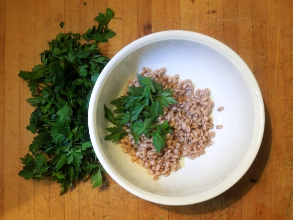 Image of cooked pearl barley and parsley