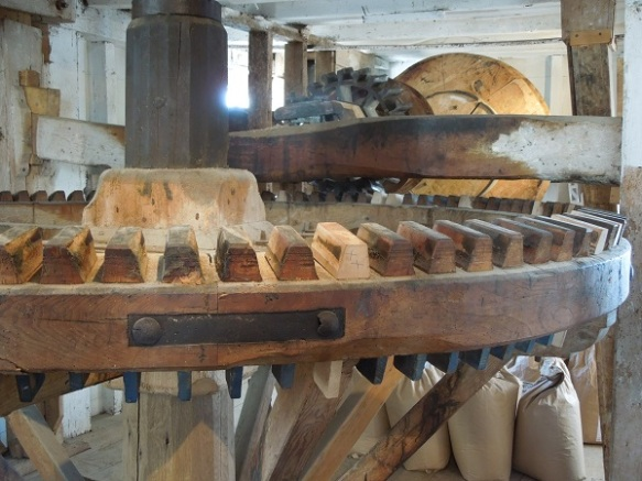 Image of the interior machinery
