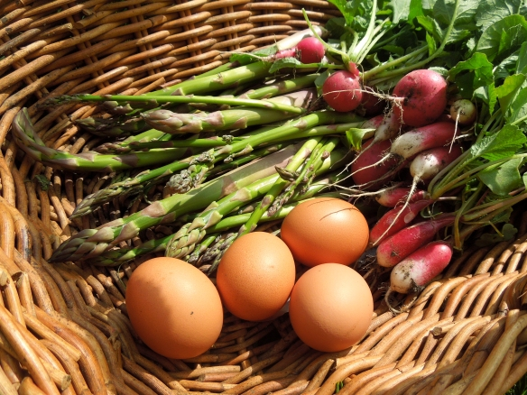 Image of asparagus, eggs and radishes in a basket