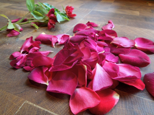 Image of rose petals stripped from the flowers