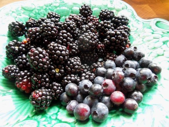 Image of blackberries and blueberries