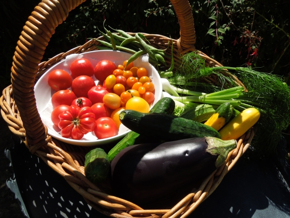 Image of basketful of salad crops