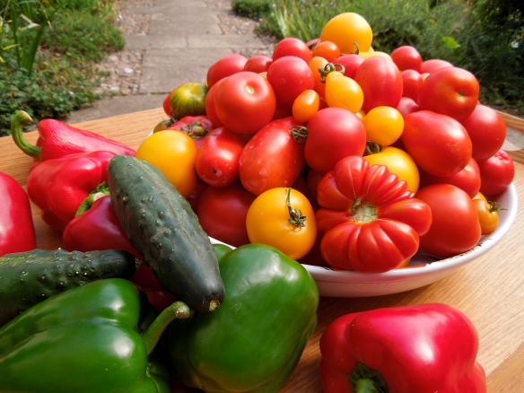 Image of tomatoes, peppers and cucumbers