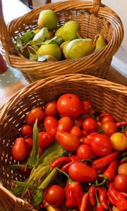 Images of baskets of pears and tomatoes