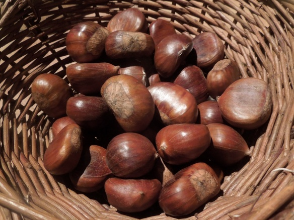 Image of chestnuts in a basket