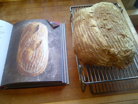 Image of early attempt at sourdough