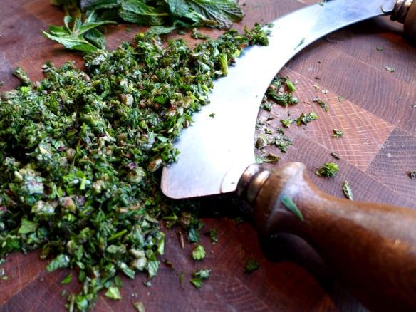 Image of salsa ingredients being chopped