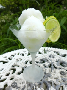 Image of gin and tonic sorbet, served