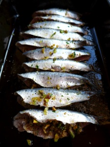 Image of stuffed sardines ready for oven