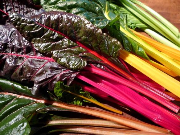 Image of rainbow chard