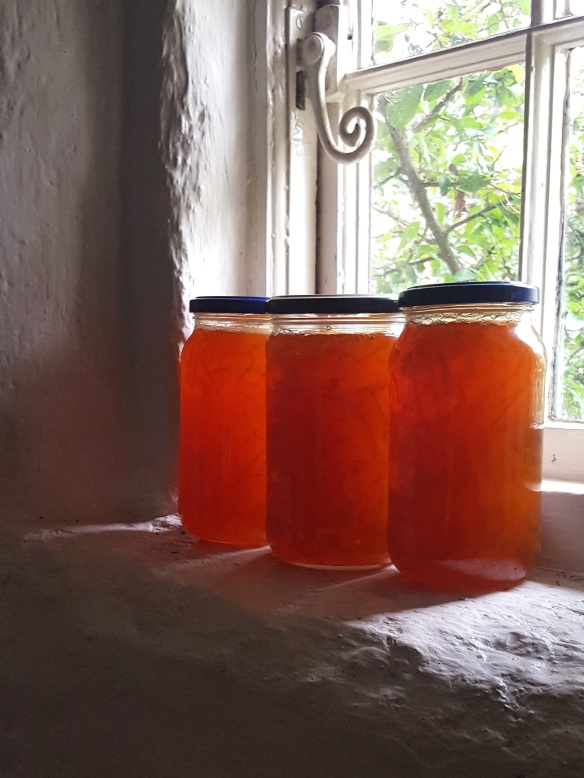 Image of Seville Orange Marmalade