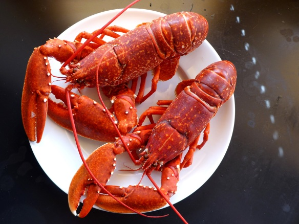 Image of cooked lobsters