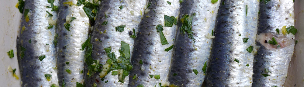 Image of marinated sardines