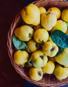 Image of quince in a basket