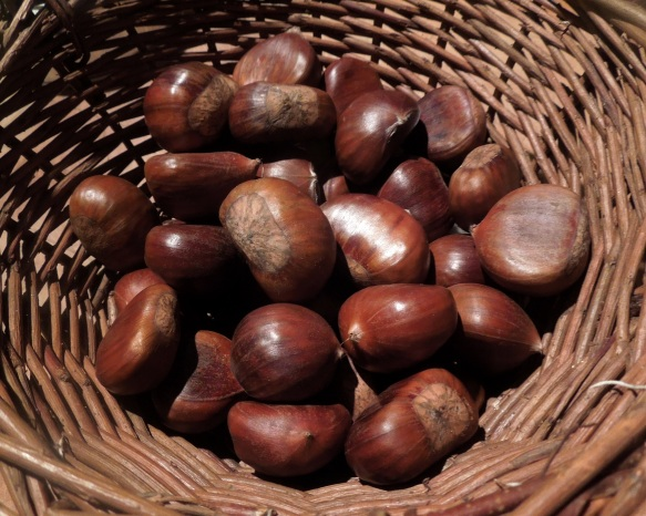 Image of chestnuts